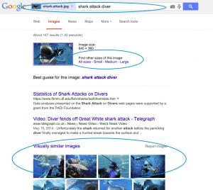 reverse-search